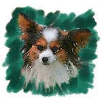 Jacque the Papillon in Watercolor